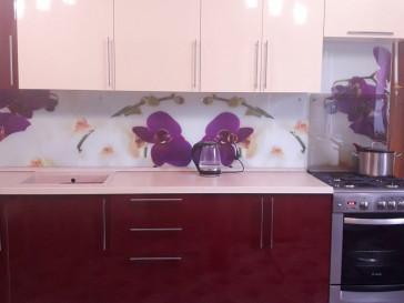 Кухня ПЛ-024