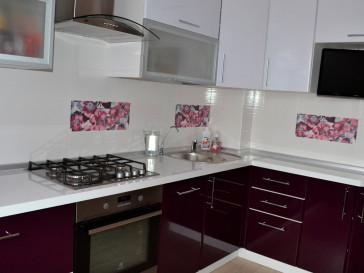 Кухня ПВХ-038